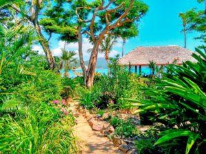 Weddings at Palm Bay Resort